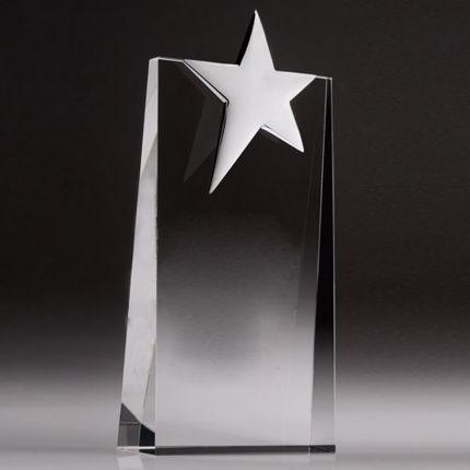 """Star Award 11 1/2"""""""
